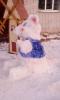 Снежная мышь