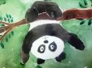 Панда - акробат