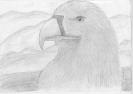 Царь птиц