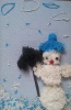 Снегивичок