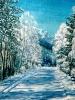 Серебро зимнего леса